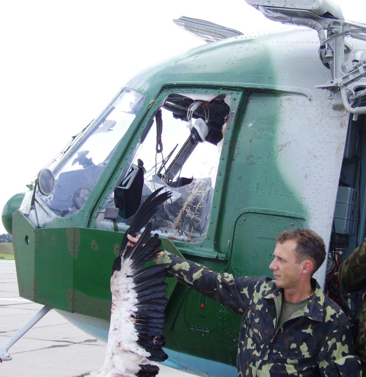 Долар, вкладений у метеослужбу, економить військовій авіації мінімум вісім доларів