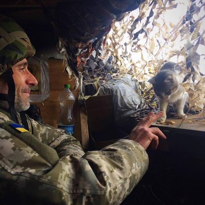 6 історій: як чотирилапі захищають Україну наСході