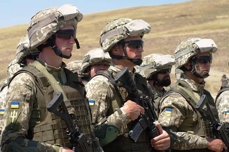 Україна та Грузія допоможуть США стримувати Росію