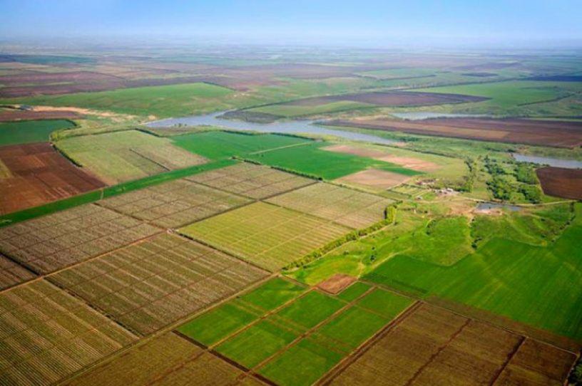 Учасники бойових дій отримають на Одещині понад 8160 гектарів землі