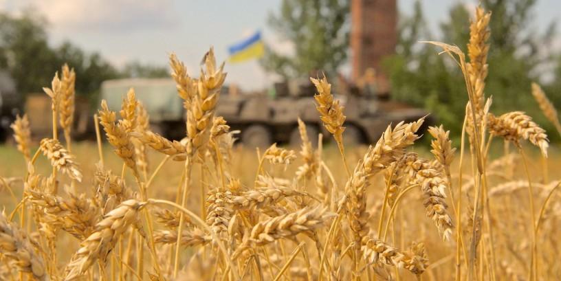 На Львівщині учасники бойових дій отримали 6765 земельних ділянок