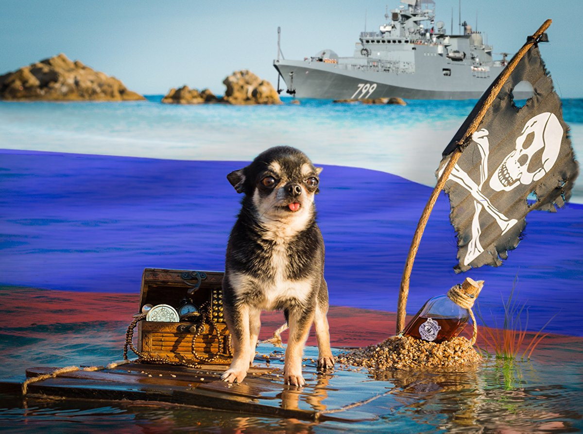 Пірати Чорного моря – надводний флот РФ