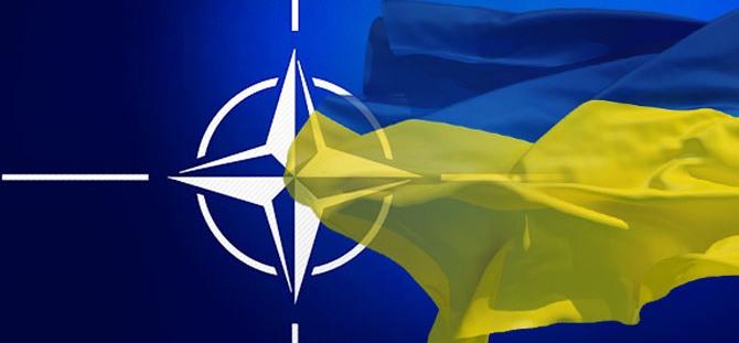 Міністр оборони взяв участь у міжнародній відеоконференції високого рівня, присвяченій обговоренню питань європейської та євроатлантичної інтеграції України