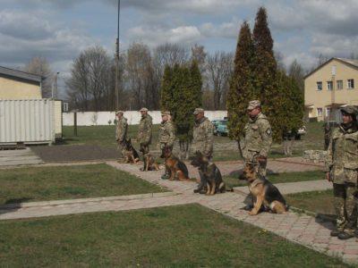 Охорону важливих військових об'єктів посилять 11 кінологічних розрахунків