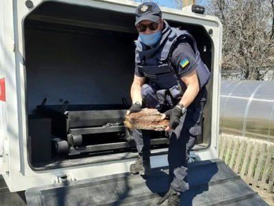 На Донбасі за тиждень знешкодили 446 вибухонебезпечних предметів