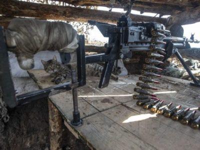 Доба в ООС: 14 обстрілів, один захисник загинув та ще один дістав бойове травмування