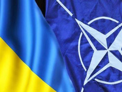Міністр оборони України Андрій Таран провів телефонну розмову з Главою Представництва НАТО в Україні Александером Вінніковим