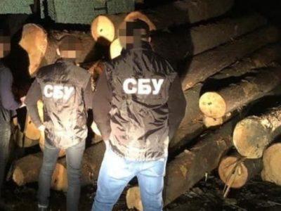 На Львівщині під час отримання хабаря затримано головного інженера військового лісгоспу Міноборони