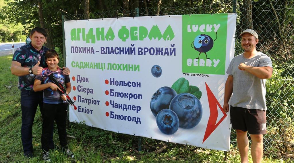 LUCKY BERRY: як волонтер та ветеран АТО на Львівщині королеву ягід вирощують