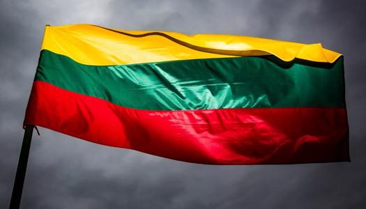 Литовським збройним силам і союзникам по НАТО не вистачає простору для військових навчань