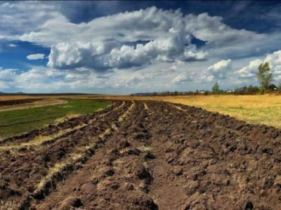 Учасники АТО/ООС із Херсонщини мають у власності понад 6,4 тис. га землі сільгосппризначення