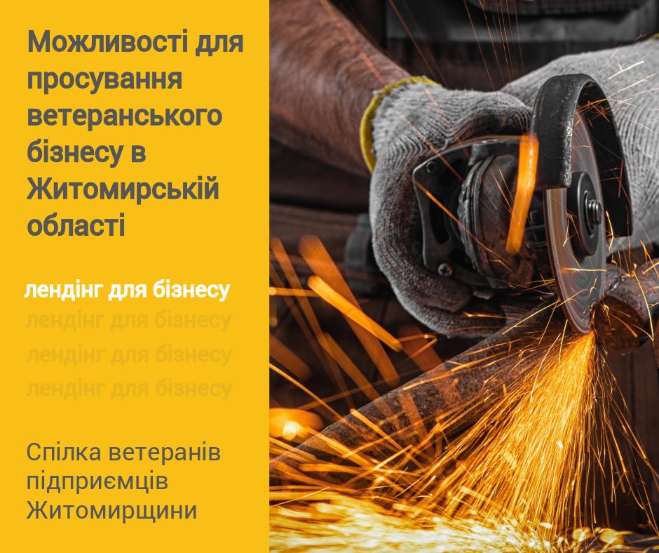 Ветеранів Житомирщини запрошують на бізнес-курс у форматі онлайн