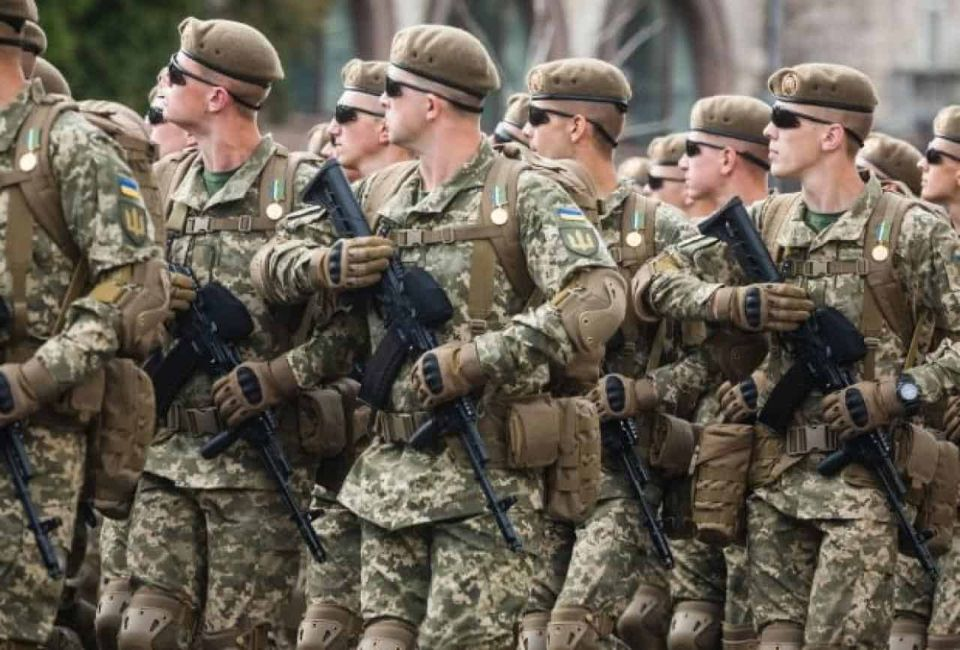 Законопроєкт про «другу армію», або Чому ухвалення проєкту Закону України 3553 військові та експерти вважають надважливим