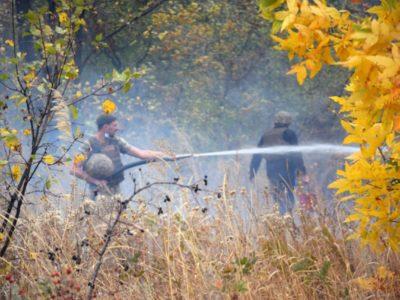 Евакуйовано майже тисячу осіб з епіцентрів пожеж, спричинених ворожими збройними провокаціями – штаб ООС