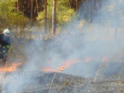 Для ліквідації пожеж на Луганщині оперативно направлені додаткові сили – Президент