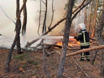 У Луганській області черговий підпал, детонують нерозірвані снаряди