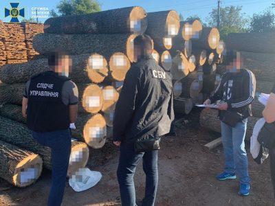 На Вінниччині посадовців військового лісництва викрили на незаконному збуті державної деревини