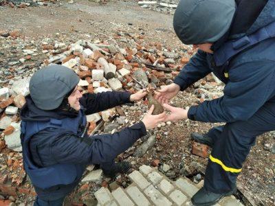 З початку року в районі ООС підрозділи ДСНС обстежили 29 га землі та знешкодили 713 вибухонебезпечних предметів
