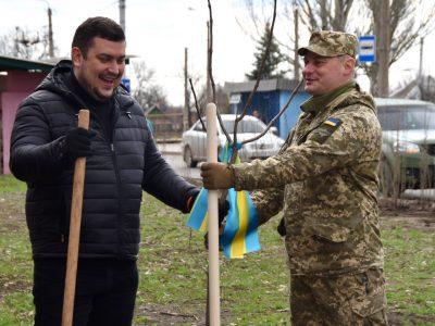 У районі проведення операції Об'єднаних сил військовослужбовці посадили дерево дружби