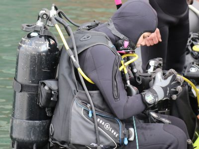 Канадський досвід у підготовці фахівців вітчизняної школи водолазів