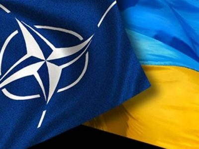 Стефанчук розраховує на Польщу та Литву в питанні надання Україні ПДЧ в НАТО
