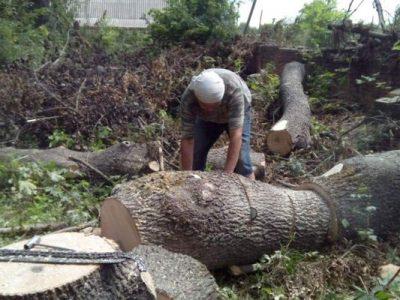 На Вінниччині ветерани війни на Сході та місцева влада заготовили дрова для сімей полеглих захисників