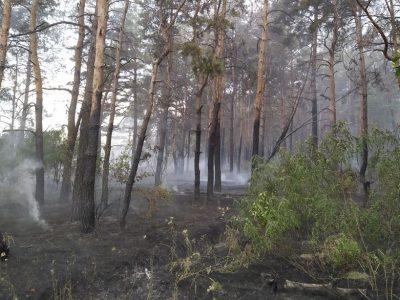 Рятувальники зі складу ООС ліквідували лісову пожежу в районі Трьохізбенки